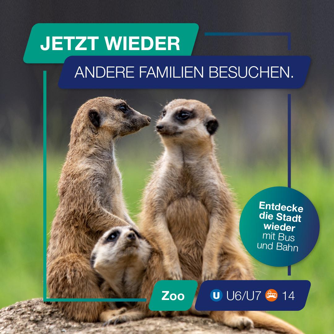 Besuch doch mal wieder den Zoo.